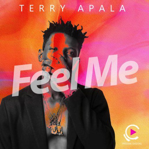 Terry-Apala-Feel-Me